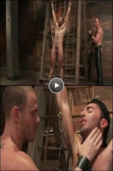 gay sex saunas video
